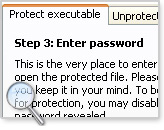 protect executable files