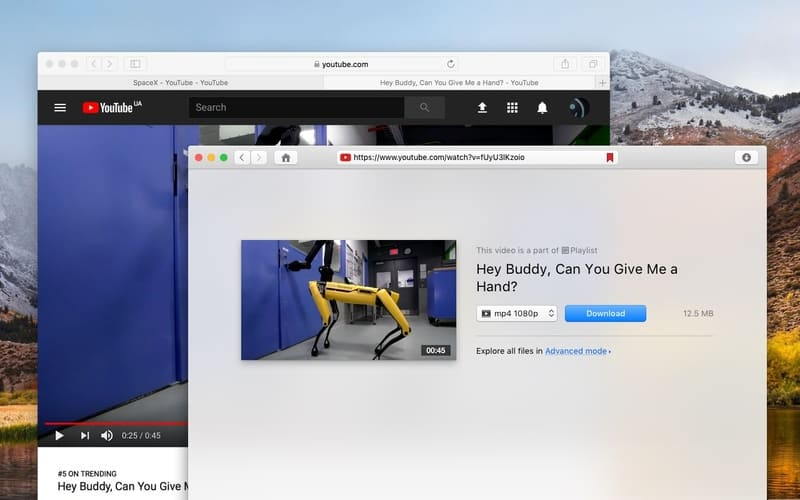 Youtube video downloader for mac